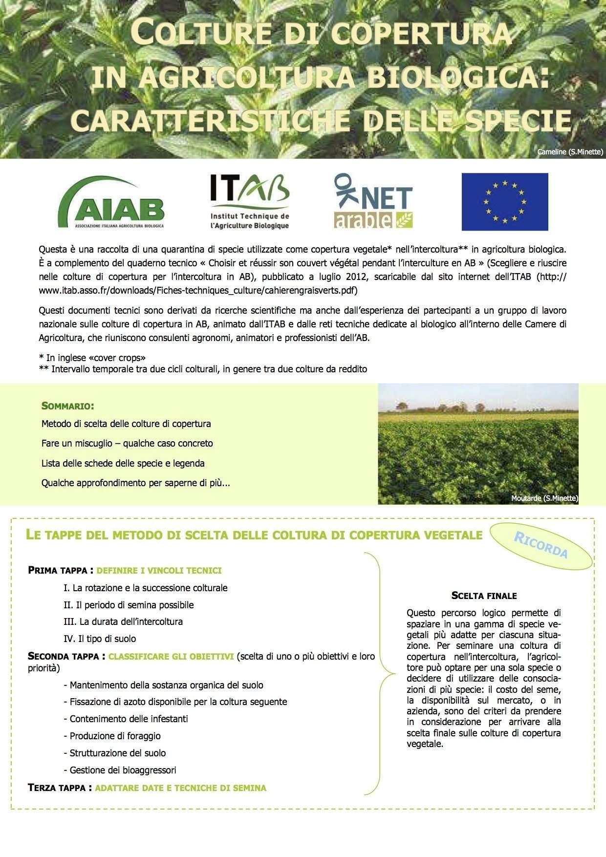 Colture di copertura in agricoltura biologica
