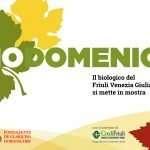 Biodomenica – 06 ottobre 2019 – Villa de Claricini – Moimacco (UD)