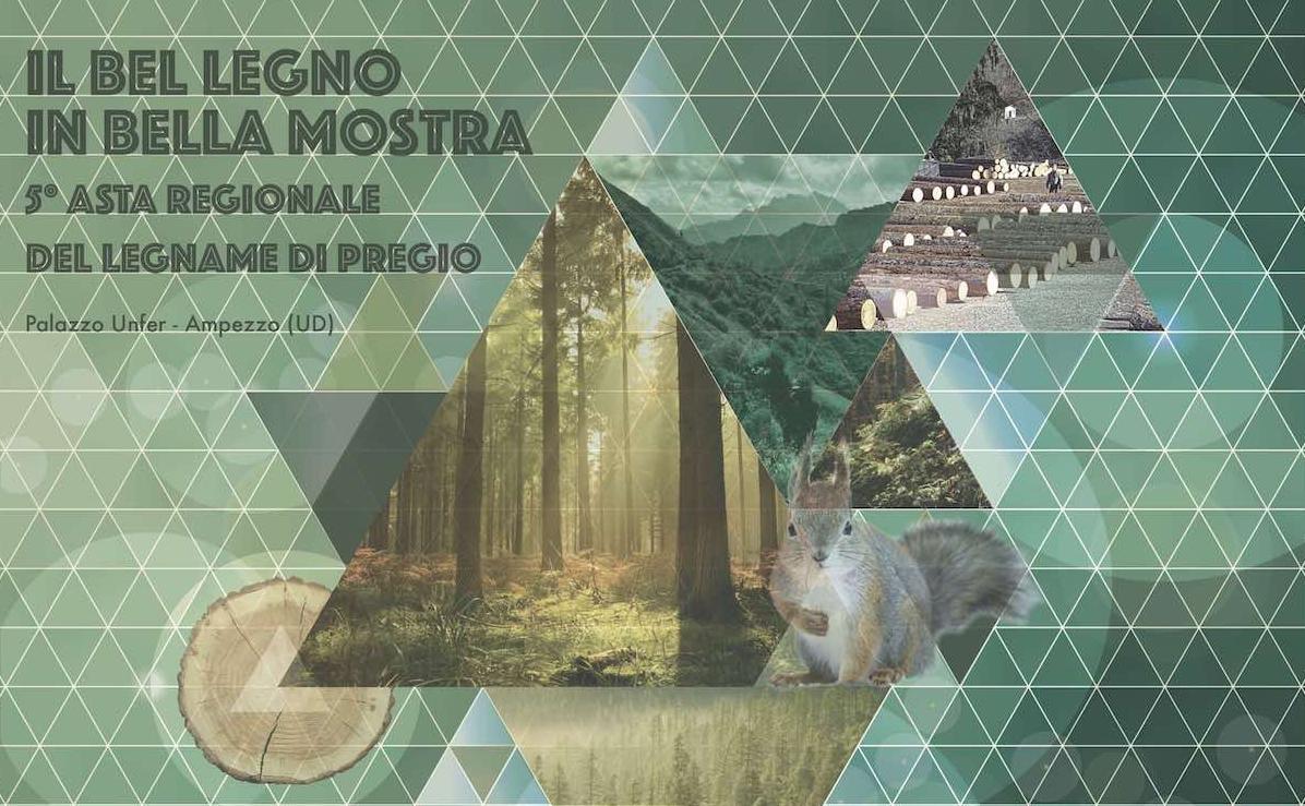 """""""Il bel legno in bella mostra"""" e 5ª Asta regionale del legname di pregio"""