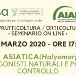 Seminario online – La cimice asiatica (Halyomorpha halys): ciclo, antagonisti naturali e possibilità di controllo