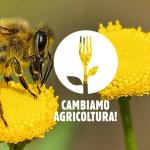 #CambiamoAgricoltura: voto UE decisivo per la riforma della PAC