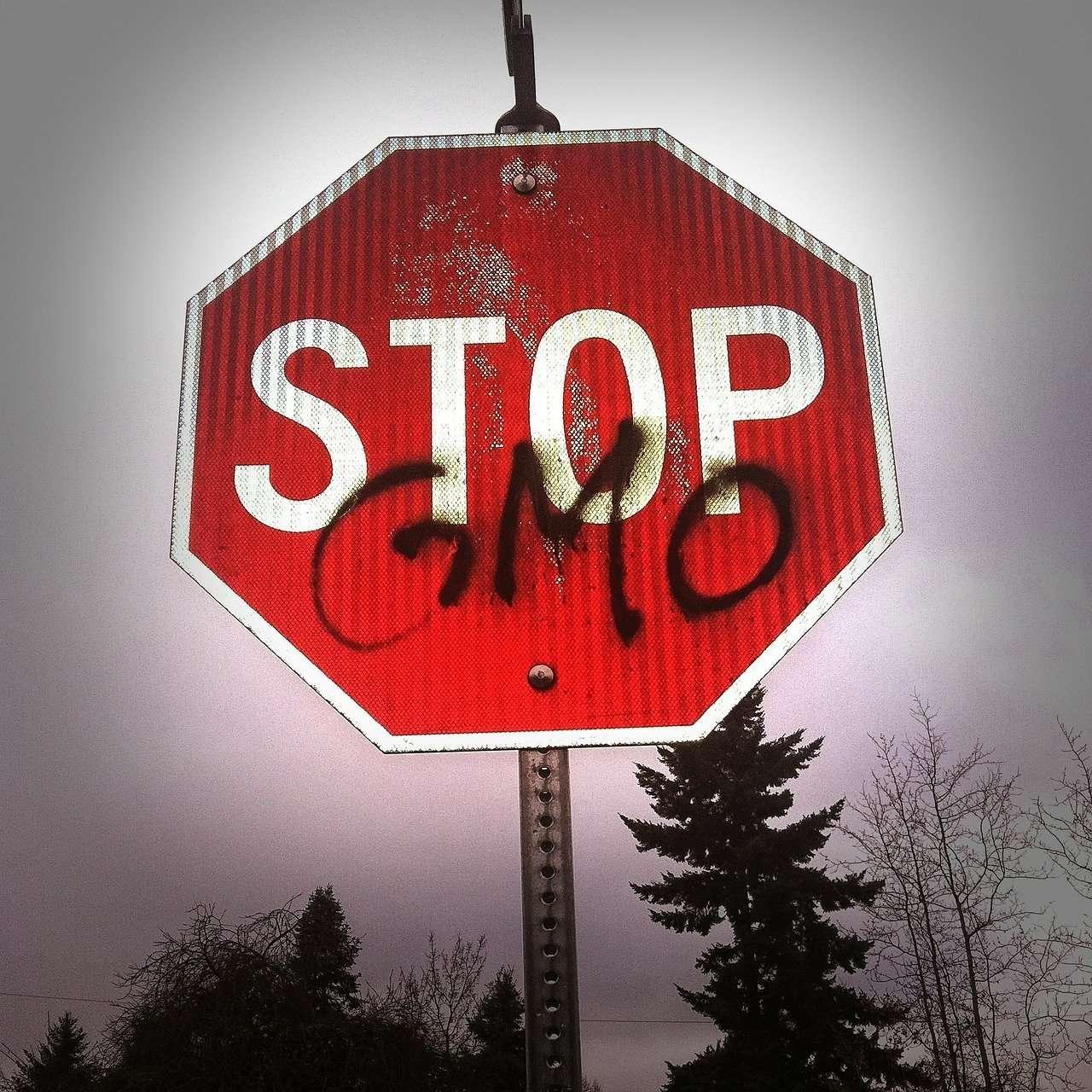 Sementi e OGM: Blitz per fa rientrare gli OGM dalla finestra: AIAB e Greenpeace chiedono al Governo il ritiro dei testi in discussione e ai parlamentari di bocciarle