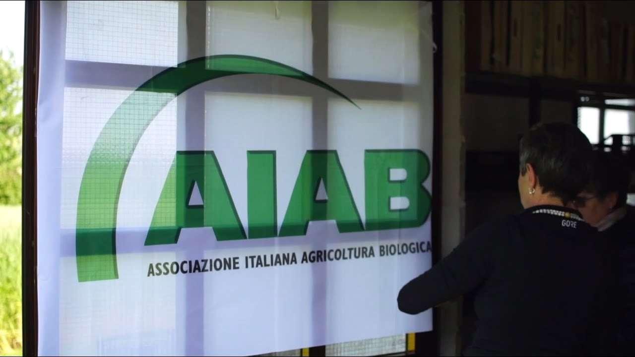 Il GODO di AIAB FVG: prodotti biologici, locali e di stagione